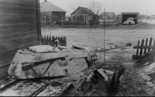 Сталинградское наступление и ржевская операция. Ржевская битва