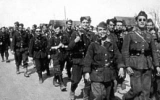 Испанская «Голубая дивизия. Голубая дивизия