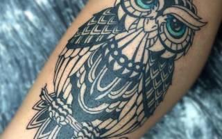 Обозначение тату сова на предплечье. Что означает татуировка сова.